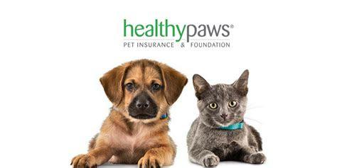 pouncey tract veterinary hospital richmond va