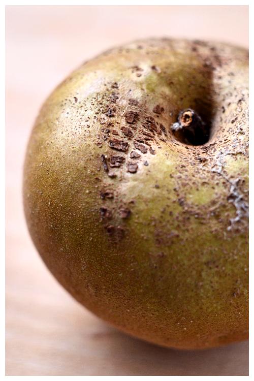 renette apple© by Haalo