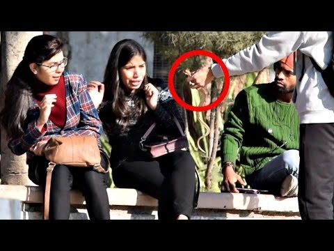 Pulling Snake From Girls Hair Prank | AVRprankTV | Pranks In India
