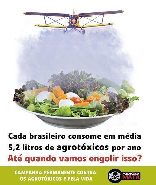 Brasileiros consomem 5,2 litros de agrotóxicos por ano - Pelo direito de não sermos envenenados!