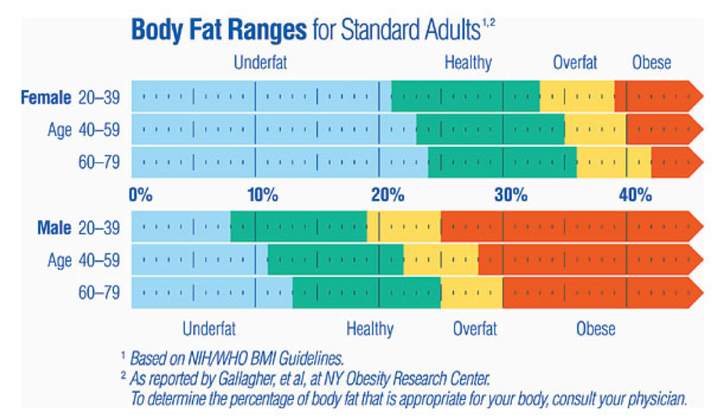 body fat percentage menstrual cycle