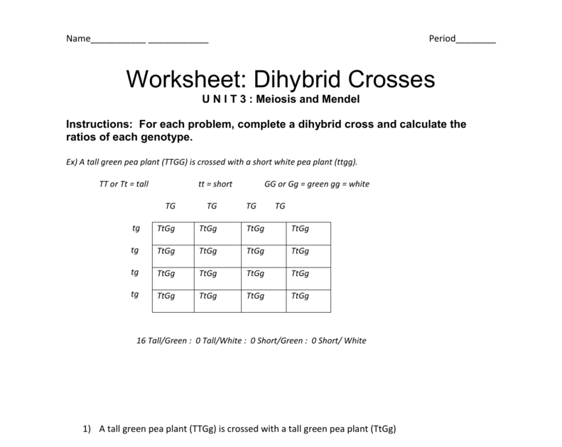 Worksheet Dihybrid Crosses Answer Key - best worksheet