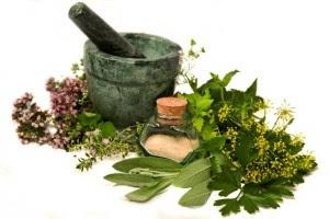 hierbas-medicinales-2