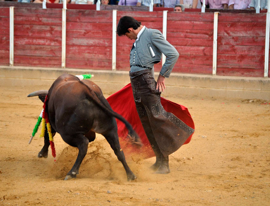 El torero sepulvedano viene en racha.