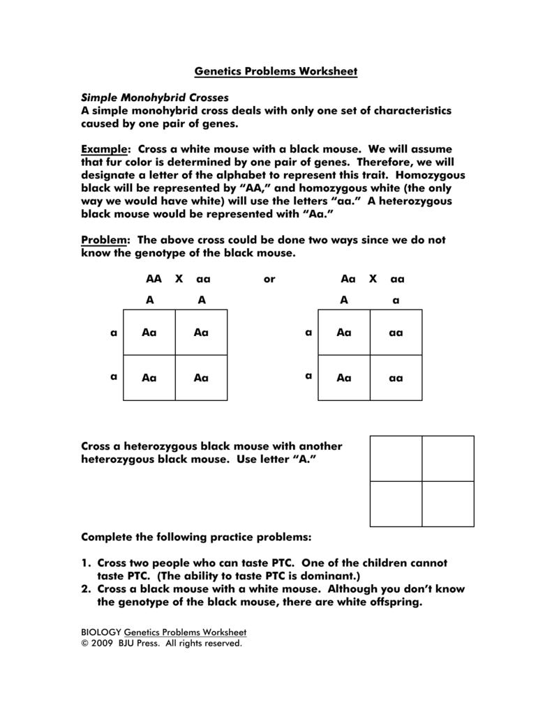 Genetics Problems Worksheet  The Large and Most Comprehensive Worksheets
