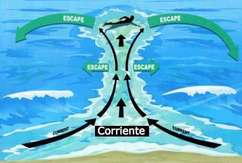Explicación de como nadar de manera correcta durante la marea