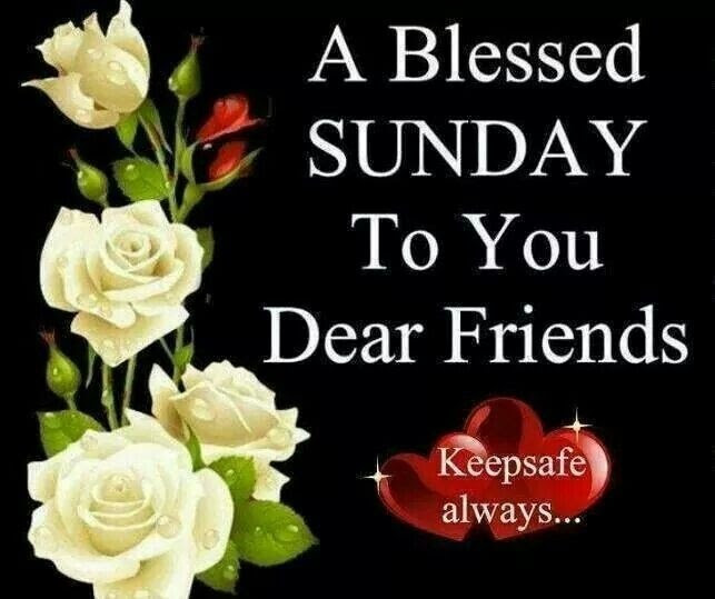 Happy Blessed Sunday Quote Quote Number 687622 Picture Quotes