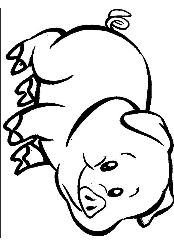 Coloriage Cochon à Imprimer