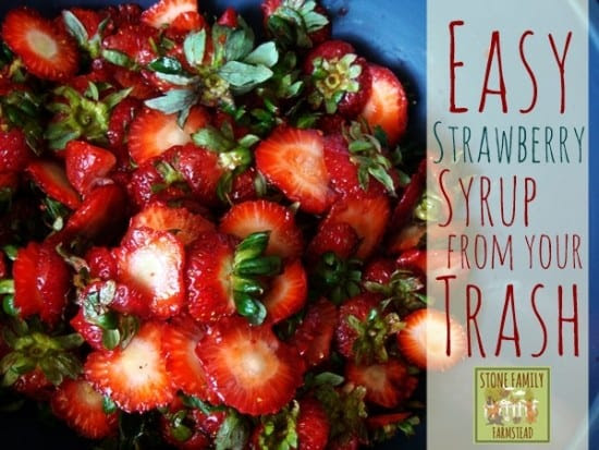 Featured on the Homestead Blog Hop from Stone Family Farmstead