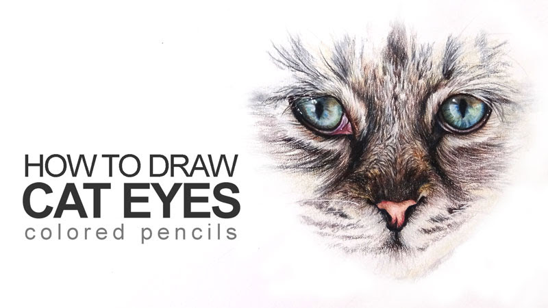 How to Draw Cat Eyes with Colored Pencils