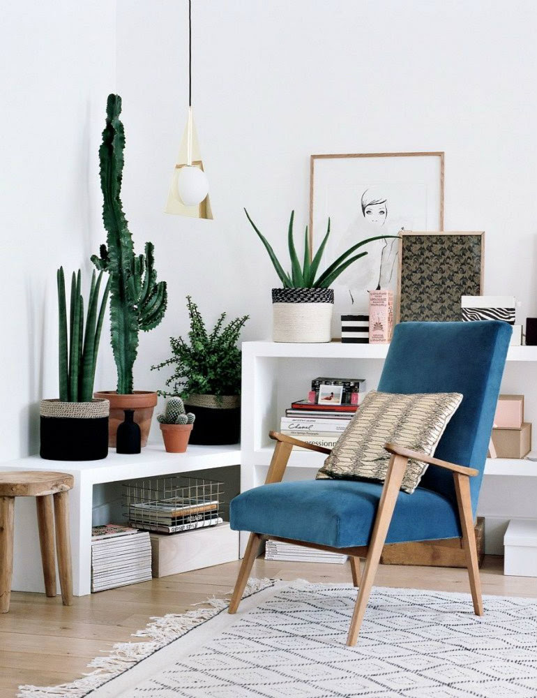 10 happy living room ideas with plants10 happy living room ...