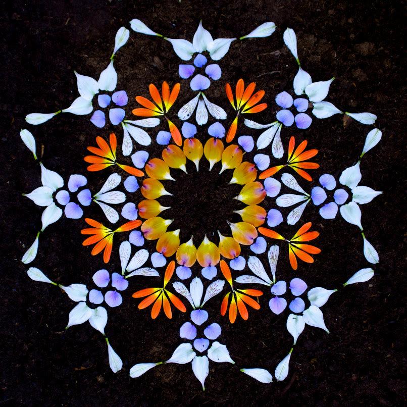 Hermosos Mandalas Hechos Con Pétalos De Flores Coloridas Alternopolis