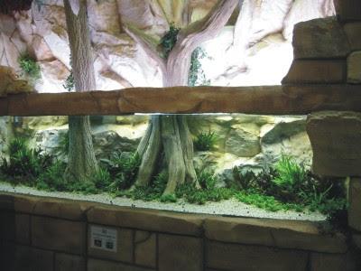 Artificial Coral Reef Aquarium Decoration Marine Fish Aquarium