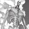 Cuerpo Completo Shingeki No Kyojin Titan Colosal