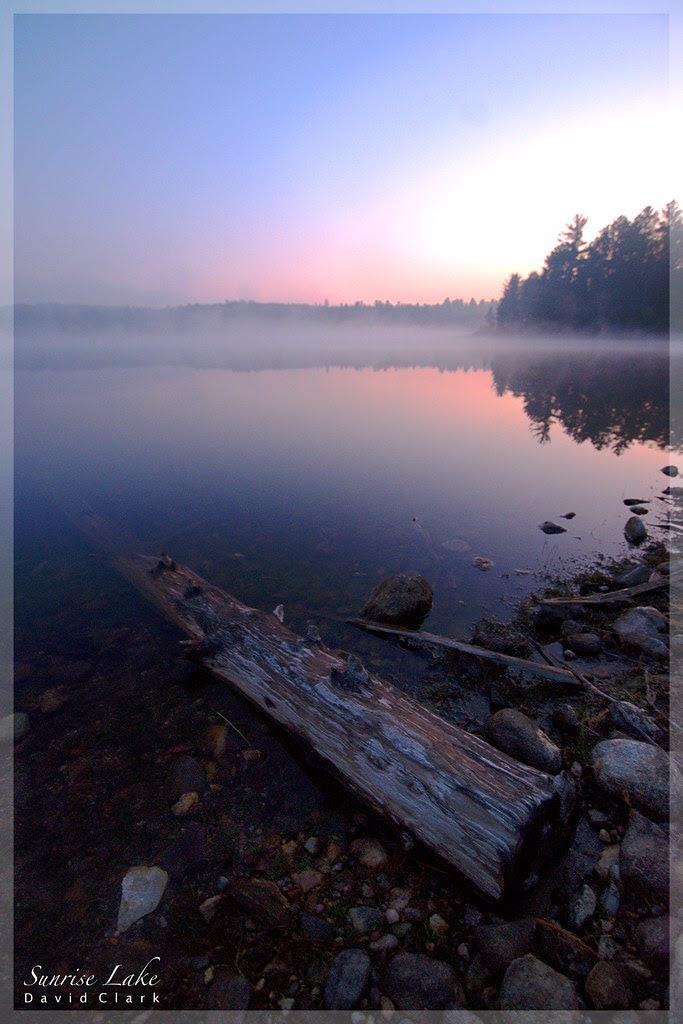 A foggy lake at sunrise.