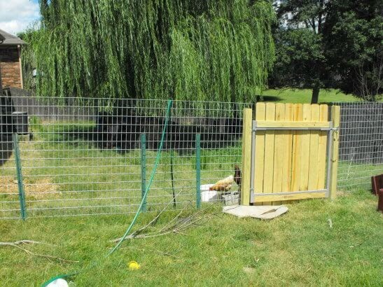 How To Make A Chicken Coop Gate Build For A Hen