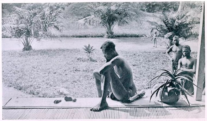 Nsala Wala frente al horror (República Democrática del Congo, 1904)