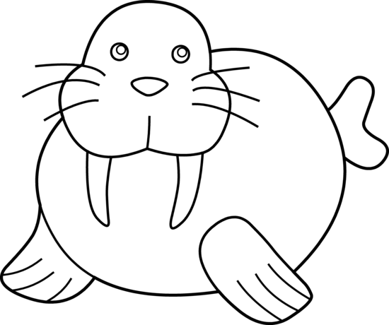 walrus_2_line_art