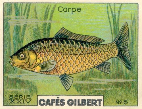gilbert rivière 5