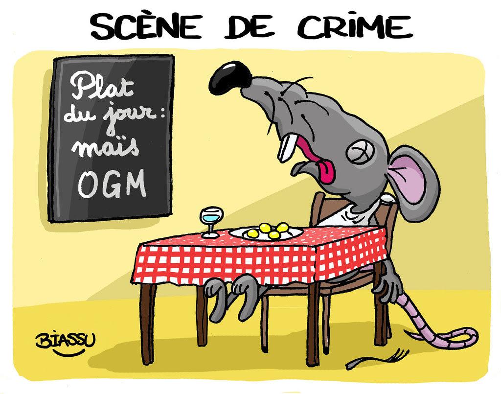 humour+maïs+OGM+NK603+Monsanto