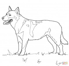 dog coloring pages koloringpages coloring dog pages