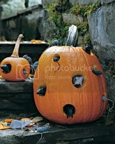 Friday Fixation: Ode to Halloween