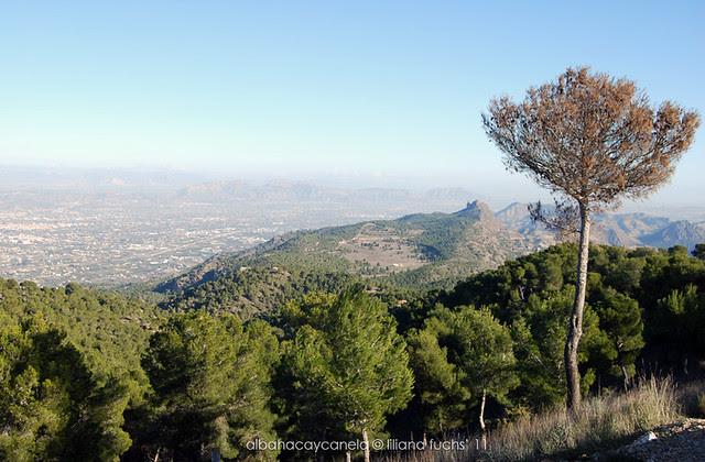 El Valle y Carrascoy desde el Relojero