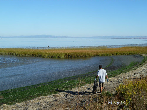 coastal cleanup 044