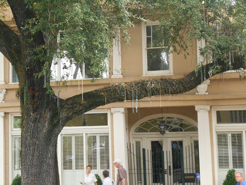 the garden district (10)