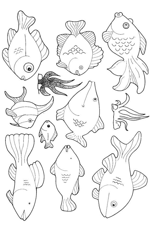 Kids-n-fun.com   Coloring page Fish Fish
