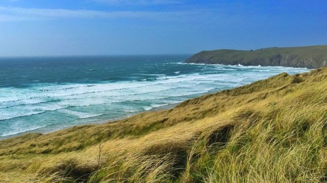 Don't look too deeply into the grass - Cornish Coast