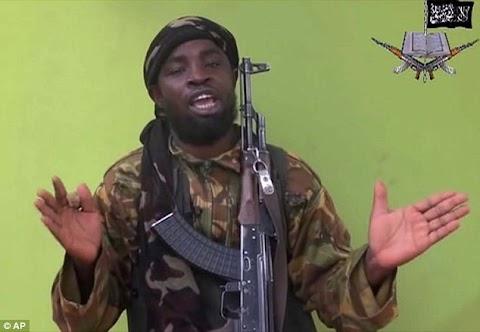 Boko Haram 'are snatching young boys from across border in Cameroon and forcing them to sign up to be child soldiers.