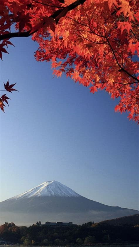 mount fuji japan  autumn iphone  wallpaper hd