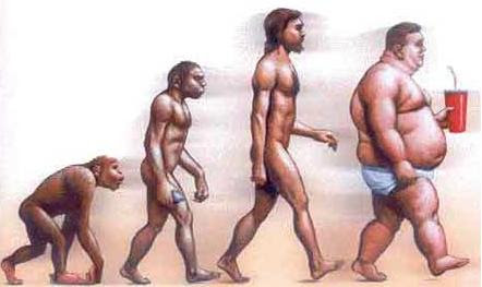 http://doblejota.files.wordpress.com/2007/11/evolucion-obesidad.jpg