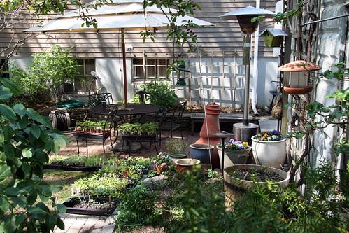 morning patio