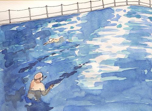 Rock Pool Swimmers
