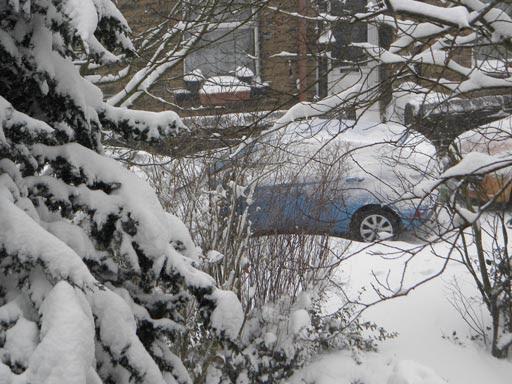 Snow 023-mar2.jpg