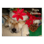 Cute akita dog santa hat cone decoration christmas greeting card