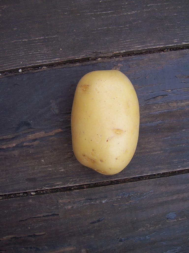 Légumes : Pomme de terre de mon jardin