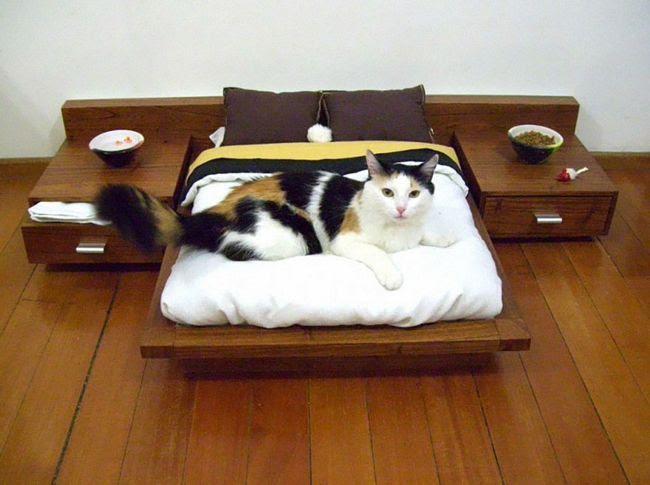 móveis-para-gatos-3