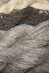 spindle wool