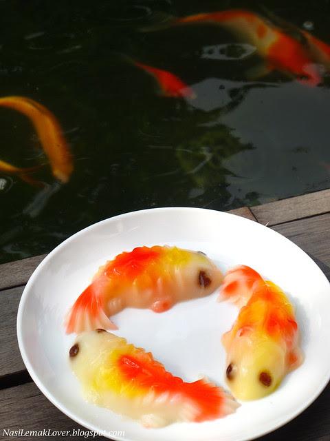Koi Fish Jelly