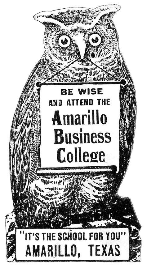 Vintage Clip Art   Awesome Owl with Banner   The Graphics