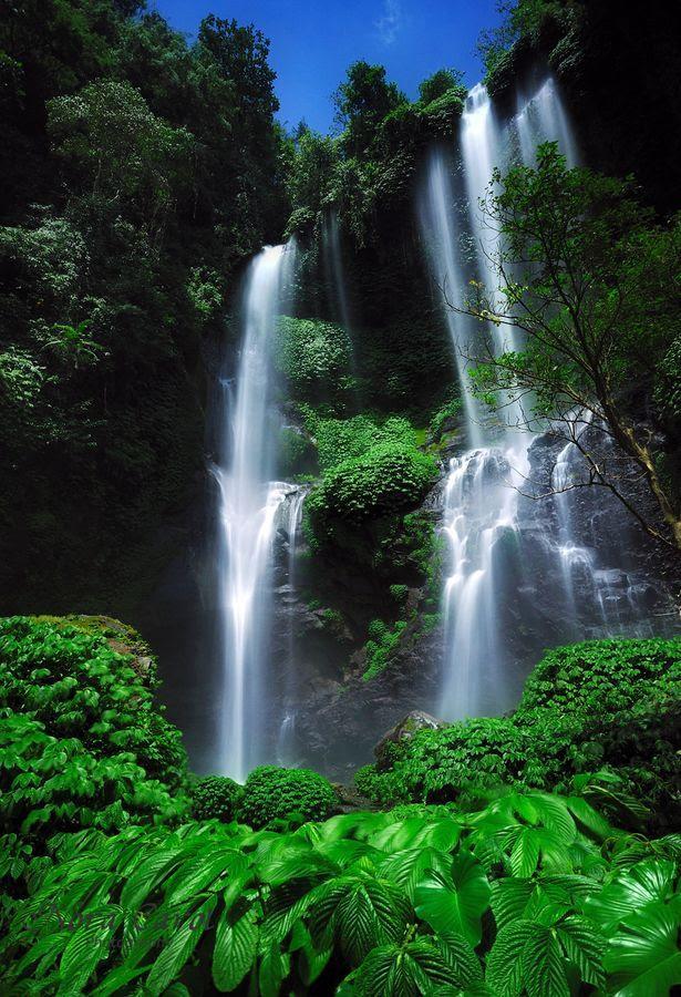 Air Terjun Sekumpul Bali Indonesia Pinterest