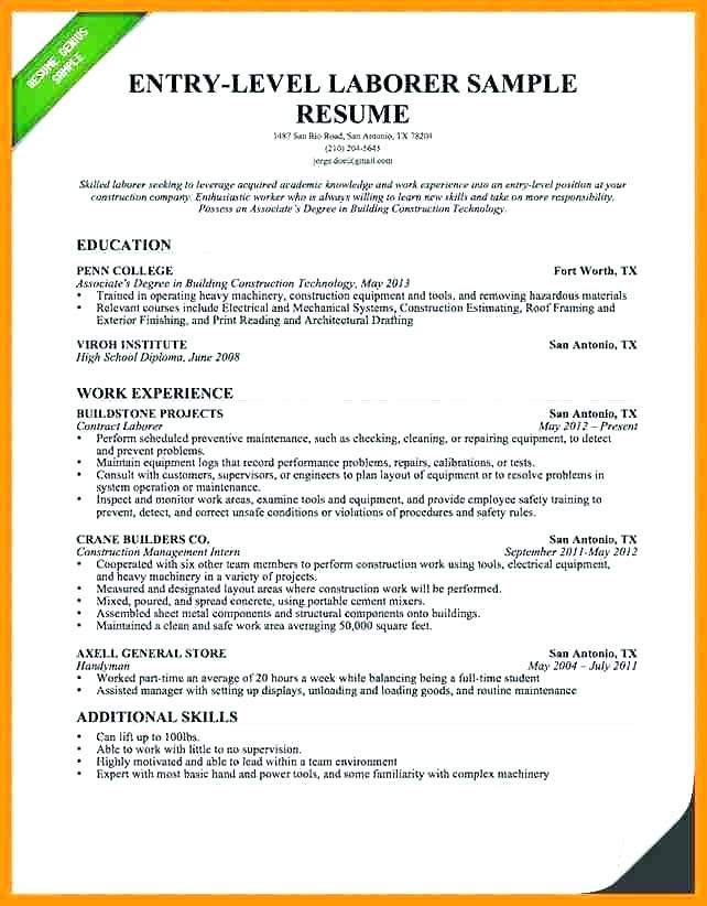 Entry Level Resume Summary Statement Examples Best Resume Examples