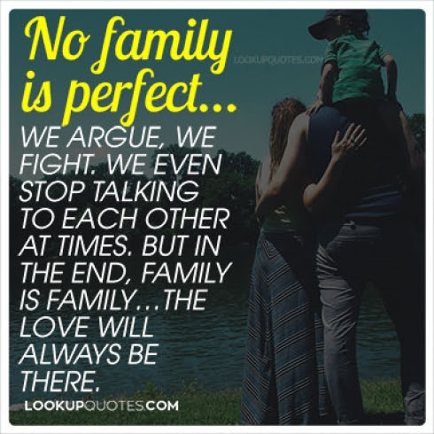 No Family Is Perfectwe Argue We Fight