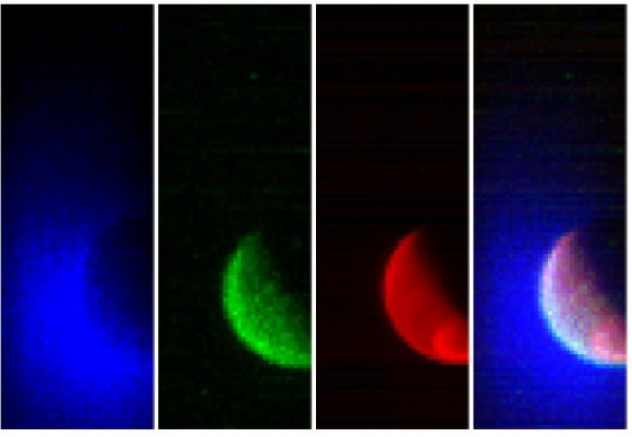 The first Mars observations from NASA's Mars Atmosphere and Volatile Evolution (MAVEN) spacecraft in three ultraviolet wavelength bands. From left to right, you can see wavelengths that focus on hydrogen, oxygen and reflected sunlight. A composite image is at far right. Credit: Laboratory for Atmospheric and Space Physics /University of Colorado and NASA
