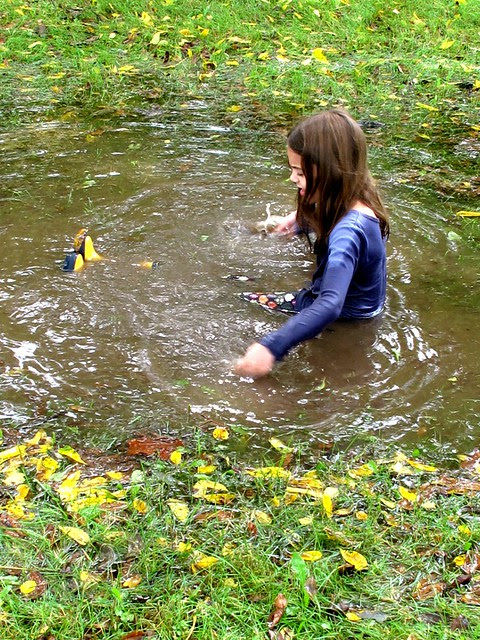 puddle- pool