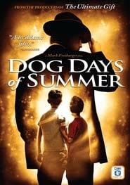 Dog Days of Summer Beeld