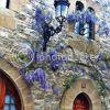 http://i757.photobucket.com/albums/xx217/carllton_grapix/18-6.jpg